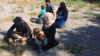 Suriye Uyruklu 45 Düzensiz Göçmen Yakalandı.