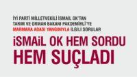 İSMAİL OK'TAN TARIM BAKANI'NA YANGIN SORULARI